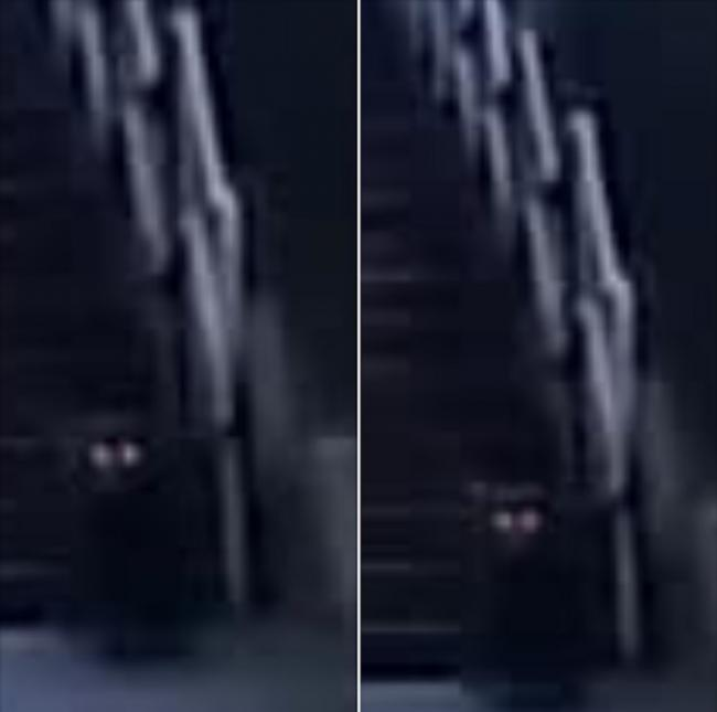The dark figure was spotted while editing the footage. Photos by Marc Potter