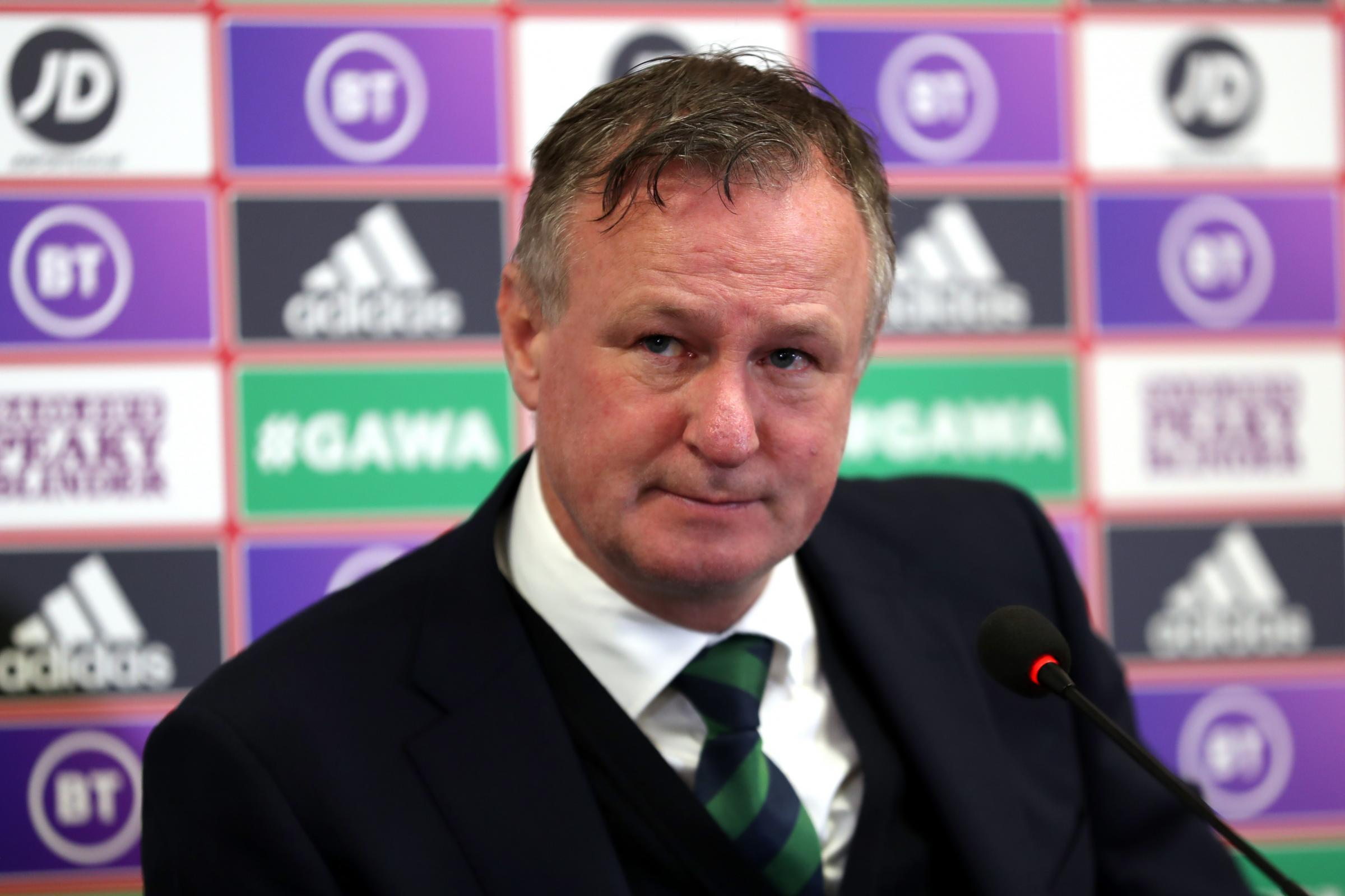 Northern Ireland moving in right direction – Michael O'Neill - Dudley News