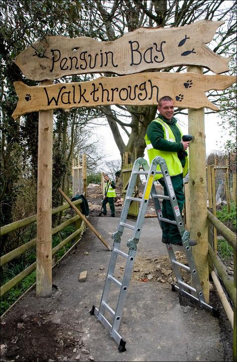 Zoo maintenance worker Drew Jordan, puts up the new signage at the entrance to Penguin Bay walkthrough experience.