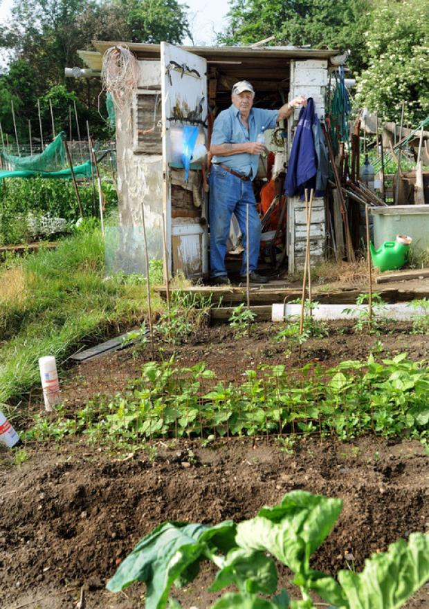 Fears over allotment land