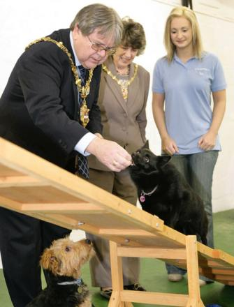 Mayor of Dudley Cllr Melvyn Mottram and Mayoress Michelle Mottram with Fina the dog and Teresa Neath at the opening of Companian pets. Buy photo: 061313AM
