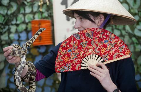 Presenter Caroline Howard gets acquainted with a friendly cornsnake as part of the zoo's Chinese New Year celebrations.