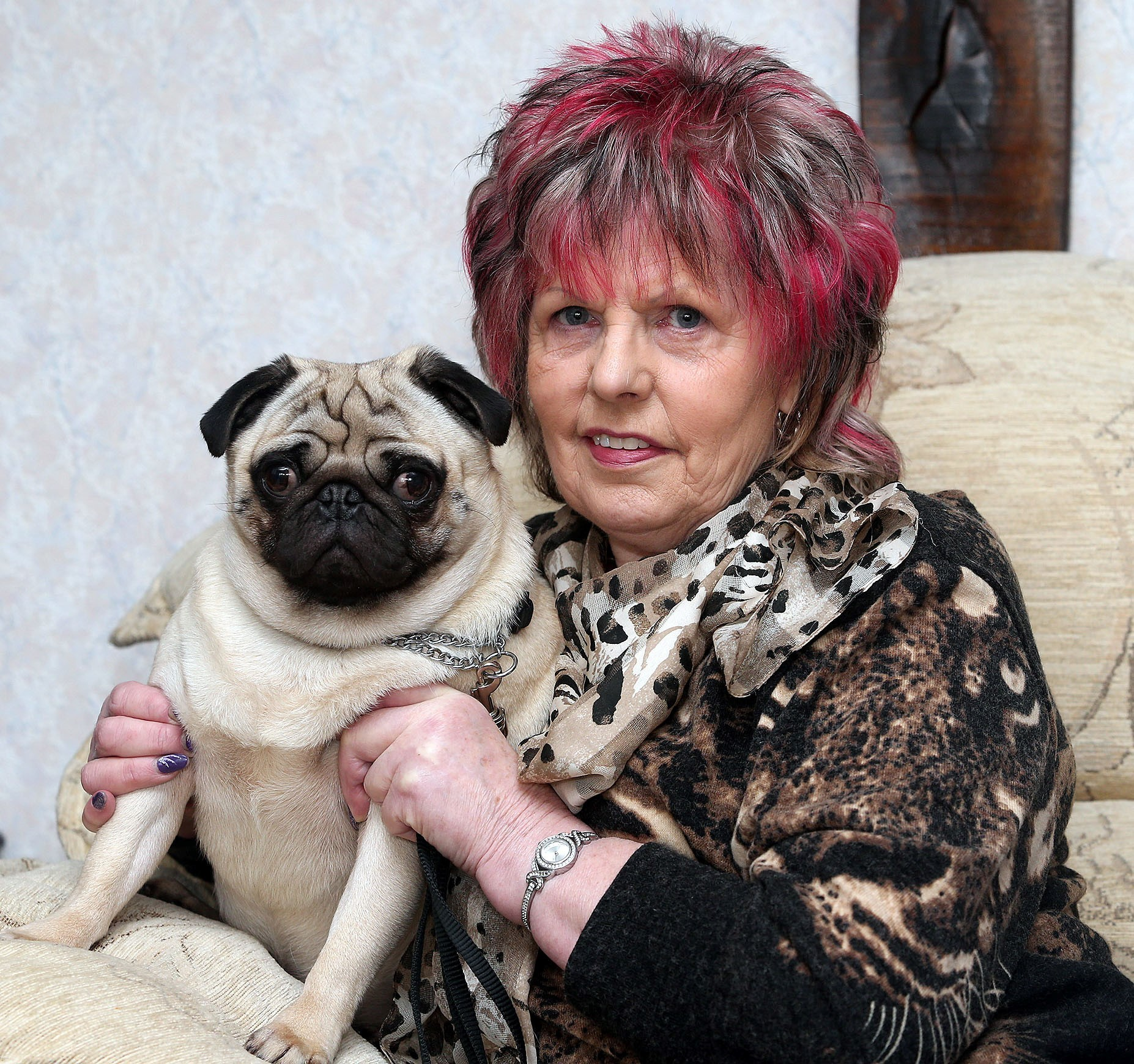 Netherton woman's passion for pugs makes her top dog at Crufts