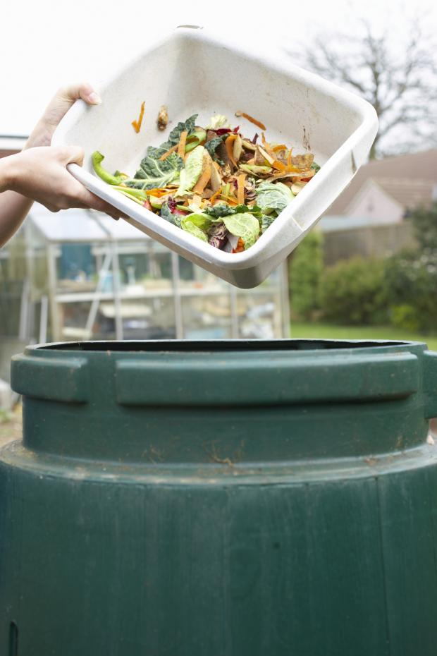 Dudley News: Dudley folk urged to bag a compost bargain