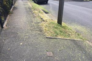 Loose grass cuttings leave Amblecote woman angry with council
