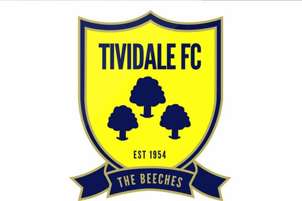 Tividale facing crucial spell, says manager Dave King