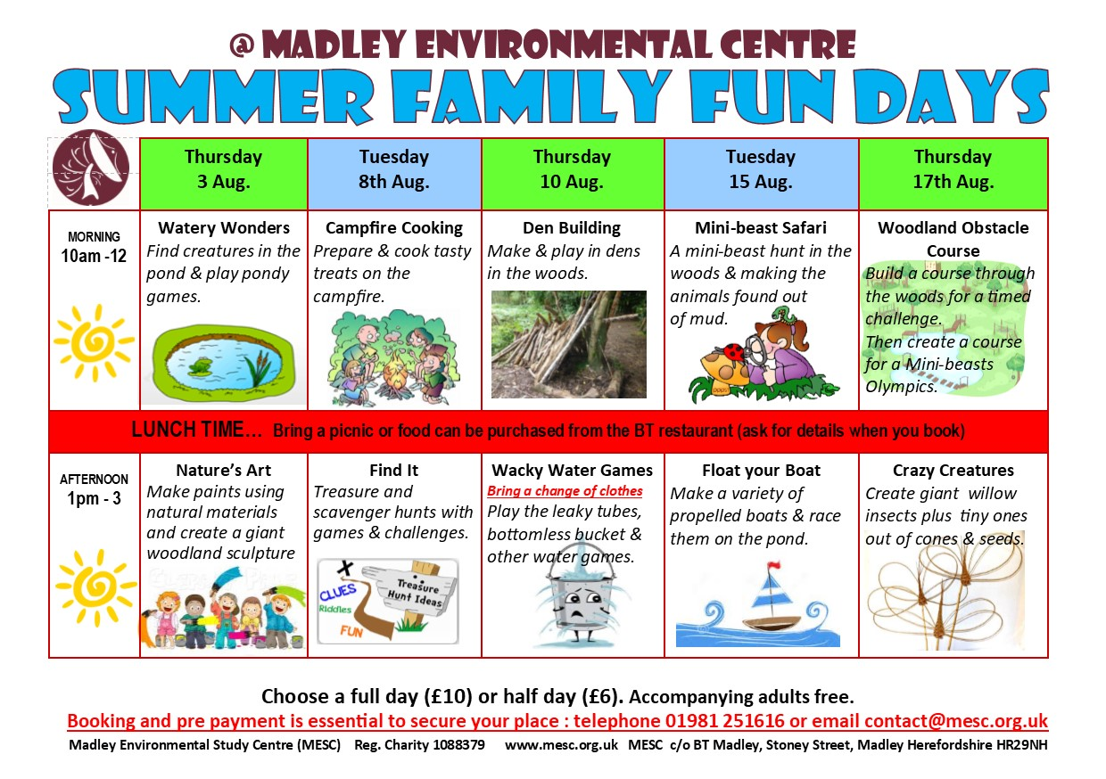 Summer Family Fun Days