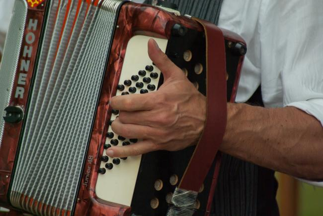 Jovan Rnjak to perform 'in concert' at Black Country Accordion Club. Pic: Pixabay