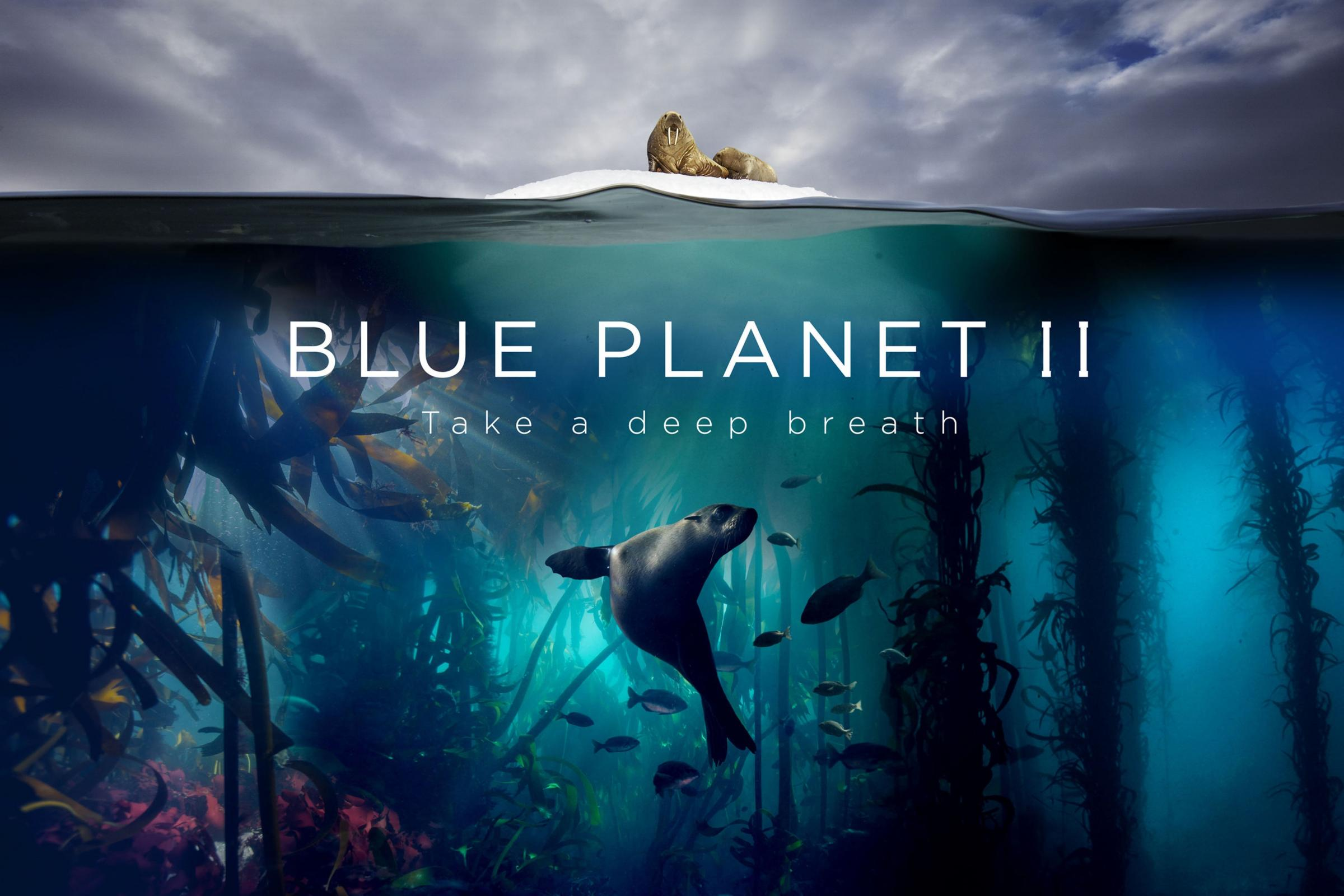 Blue Planet II (BBC)