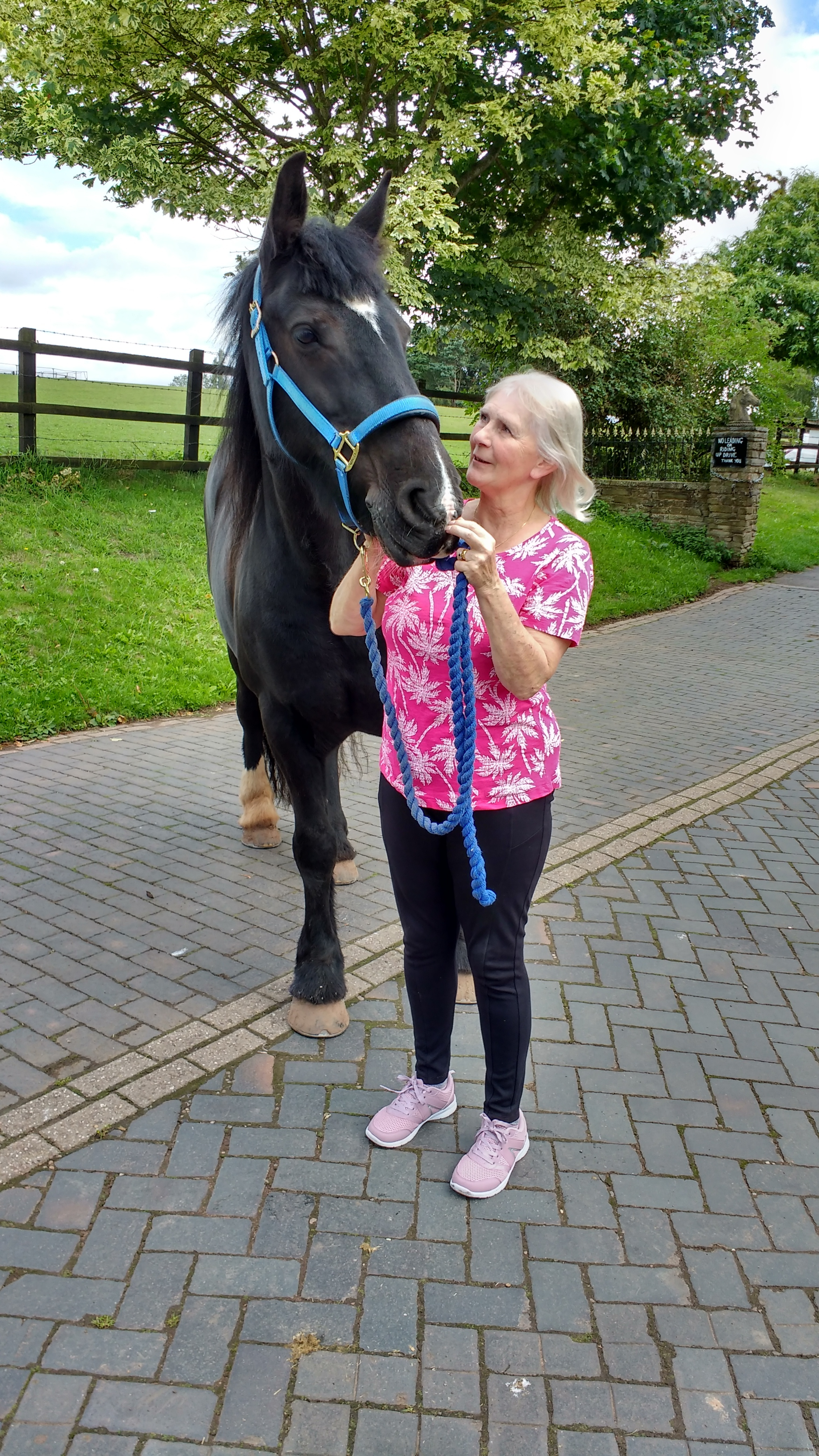 Jean Hayward, pictured with her horse Blackie, has penned her first novel.